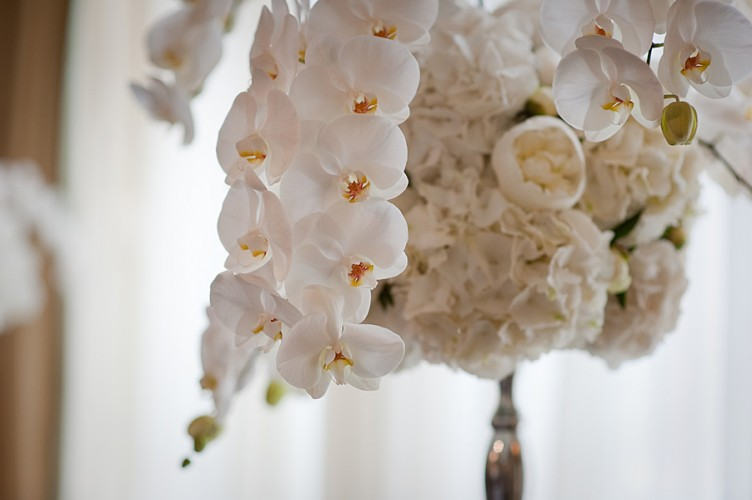 Claridges Wedding Flowers by Blooms and Bows